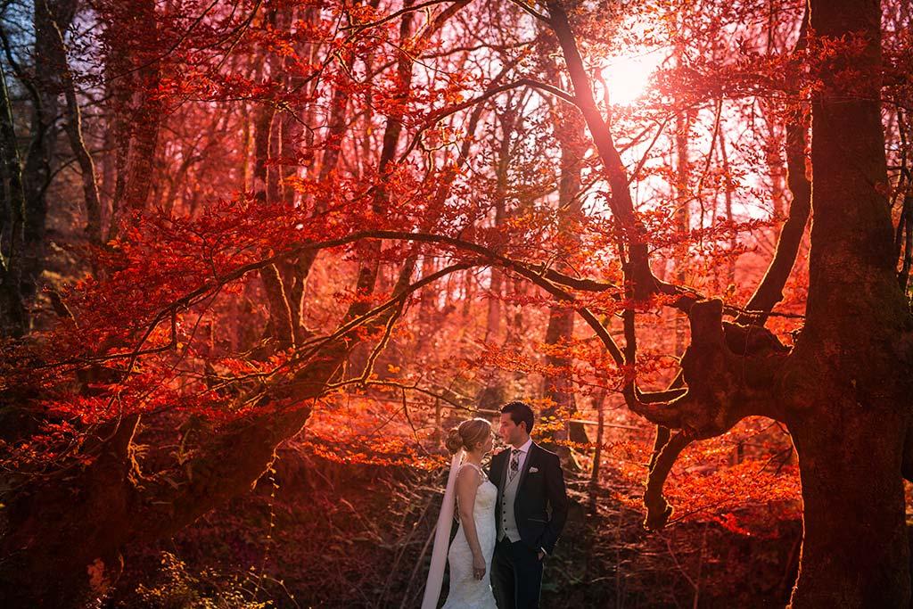Fotos de bodas Santander Diana y Javier arbol