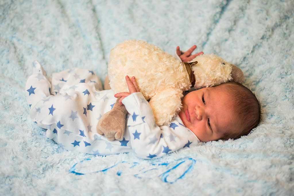 fotos de bebes recien nacido enzo peluche