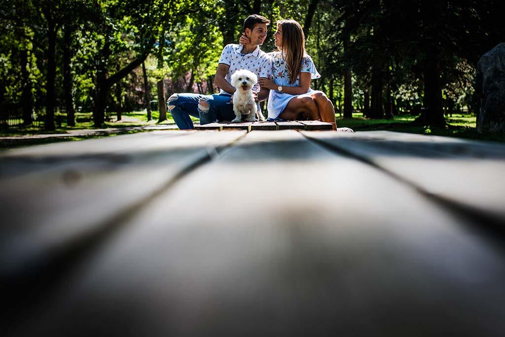 fotógrafo de bodas Cantabria Ana y Mario perro