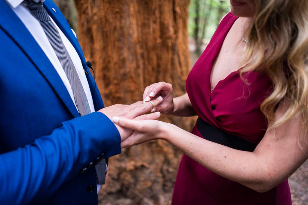 boda íntima en Cantabria Marcos Greiz anillos